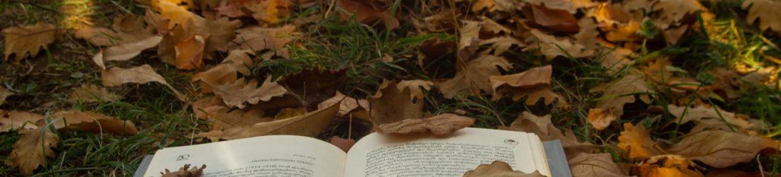 write your memoir, book among leaves.